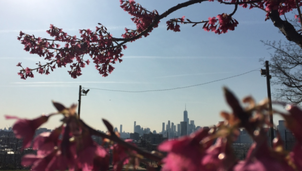 hOMES: Weekly Insight Into Hoboken & Jersey City Real Estate Trends | April 13, 2018