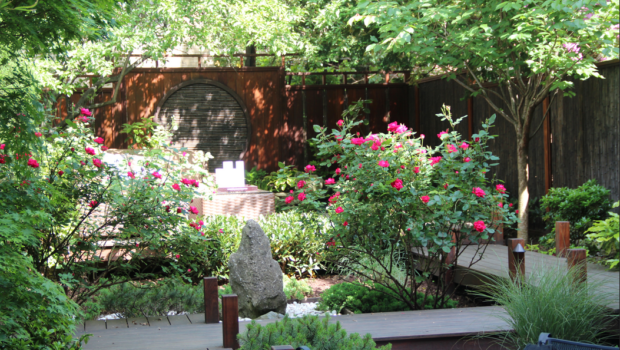 BACKYARD BEAUTY: Hoboken Historical Museum Hosts Their Annual Secret Gardens Tour — SUNDAY, JUNE 3