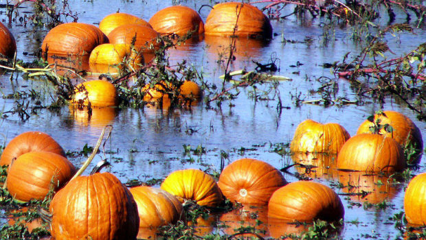 WICKED: Halloween Weekend Weather Looks Pretty Ghastly