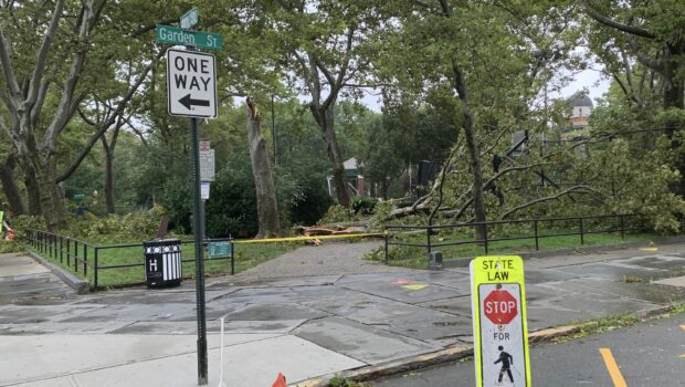Trees Down, Power Outages Reported in Hoboken and Jersey City as Tropical Storm Isaias Rolls Through